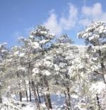 تساقط الثلج في انطاليا