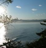 ساحل البحر الأسود التركي