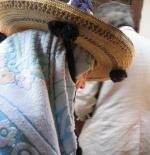 Moroccan Mountain Woman