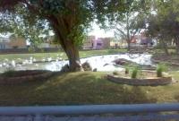 حديقة الحيوانات بمدينة الرياض