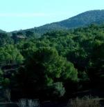 الجبال في مدينة الحمامات