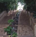 السلالم الملكيه