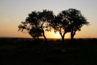sunset limassol cyprus