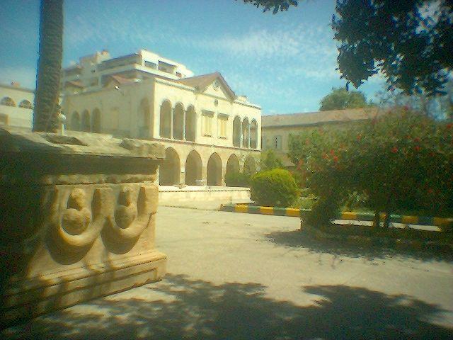 دخل متحف اللاذقية
