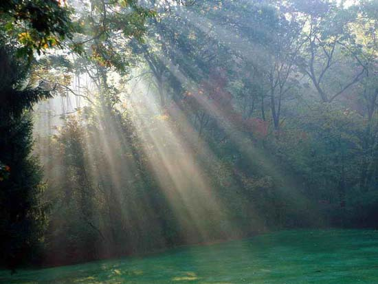 صورة لجمال الطبيعة