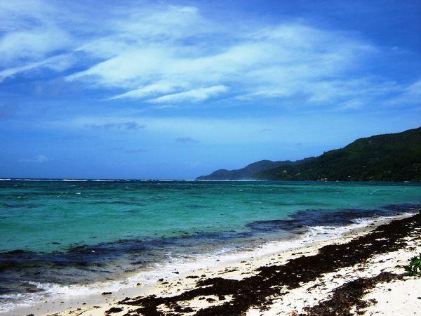 الشاطئ beach