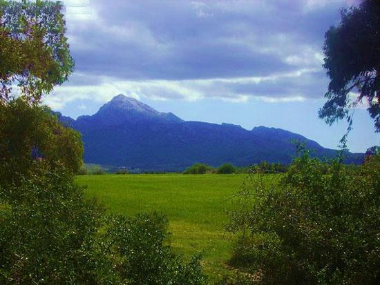 جبل زغوان