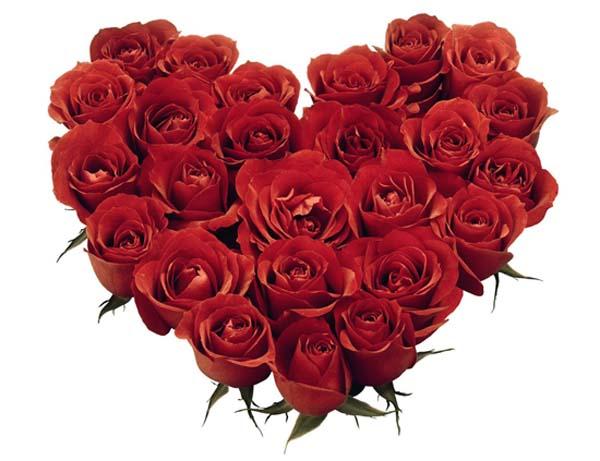 عقبال مليون سنة يا منتدى نظرة عيونك يا قمر عامان من التميز والجمال والعطاء (تهنئة مقدمة من جميع اعضاء المنتدى بعيد ميلاده الثاني ) Red_roses_heart