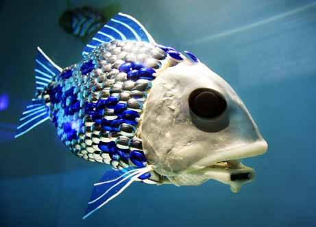 ¶«-.¸¸.-»©¶ نــــــادرهـ غـــريـــبـــه عــجــيــبه صــور robot-fish.jpg
